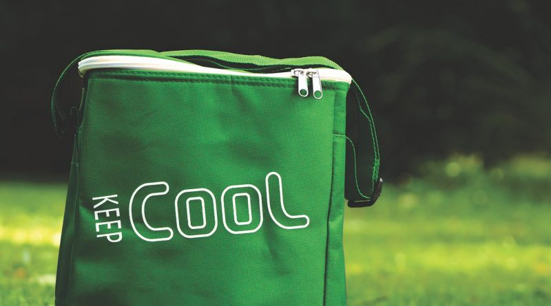 Best Portable & Small Cooler Bags
